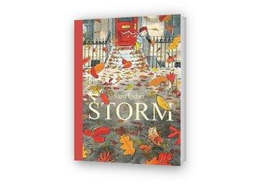 Cover afbeelding van Storm
